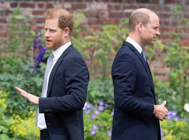 Принц Гарри обматерил принца Уильяма из-за его высказываний о Меган Маркл